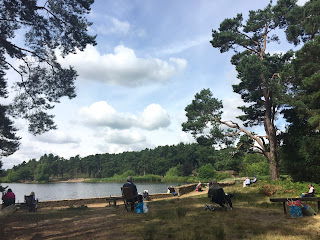 Summer Workshop no.2 at Frensham Little Pond