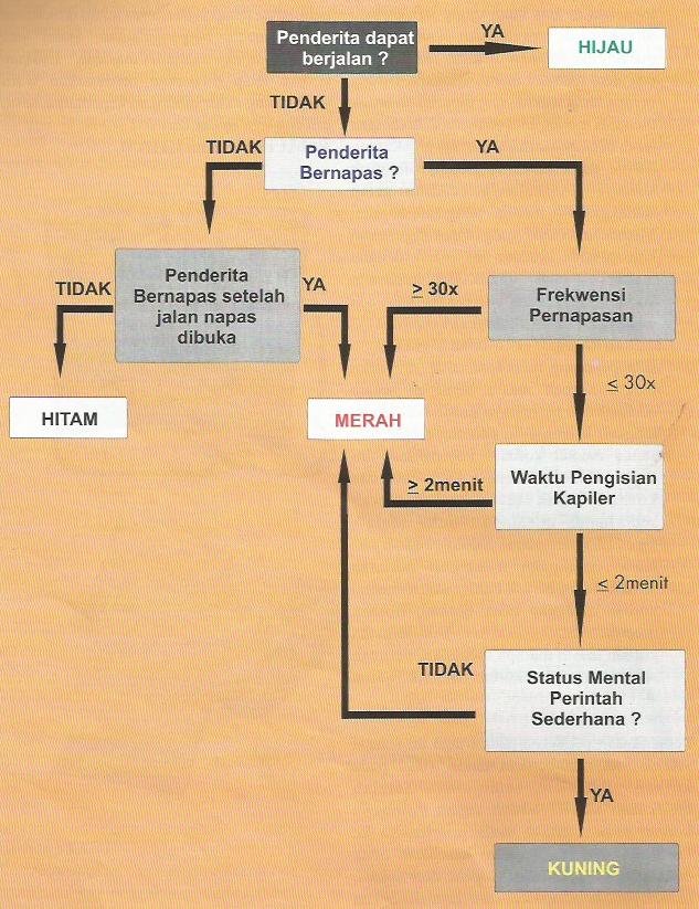 Diagram Alir Pertolongan Korban Banyak (Triage)