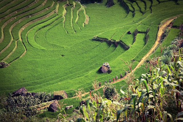 Enjoy the beautiful sceneries of Vietnam through the travel 2