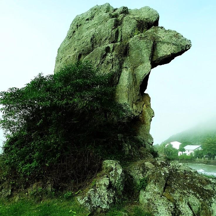 Bico do Papagaio: principal atrativo natural de Itajaí.