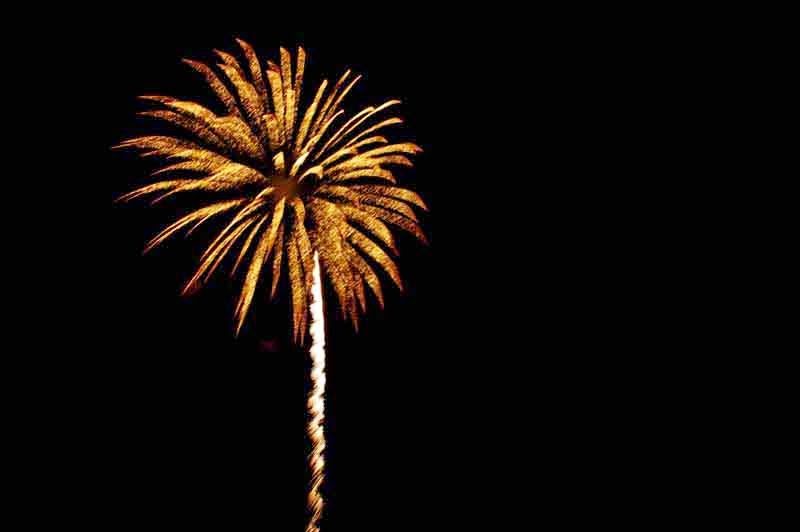 fireworks, looks like a flower
