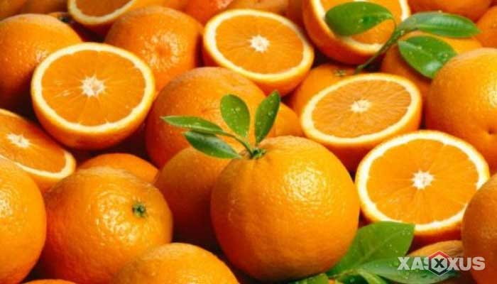 Makanan penambah darah - Jeruk, buah penambah darah