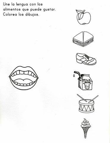 Activipeques: Los 5 sentidos