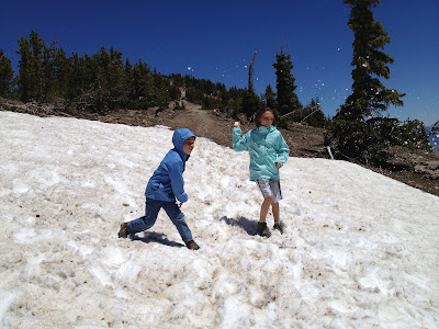 Top 5 Family Adventures in Yellowstone and Grand Teton National Parks