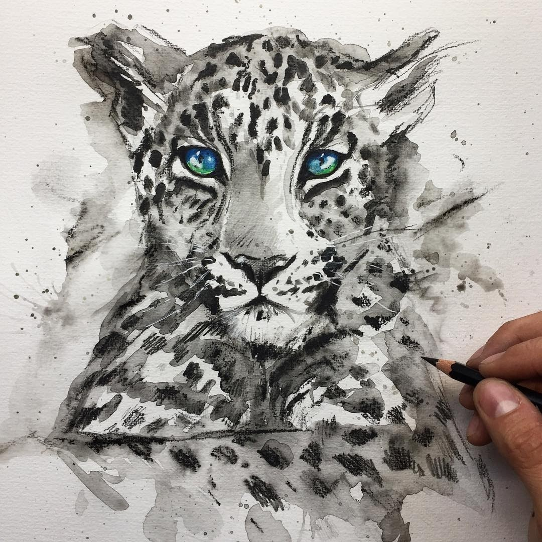 12-Leopards-Liam-James-Cross-Wild-Animals-Drawings-and-Paintings-www-designstack-co
