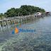 Labun Island One Day Trip  Snorkeling Pulau Labun