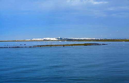 Ilha da Culatra Olhão.
