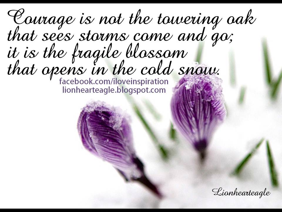 Quotes On Courage And Love Love Courage Quotes