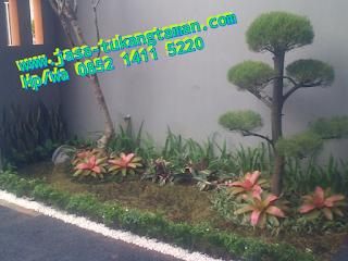 http://www.jasa-tukangtaman.com/2017/08/tukang-taman-tanah-kusir-rempoa-bintaro.html