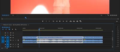 Cara Membuat Efek Sensor (Blur) Premiere CC Pro