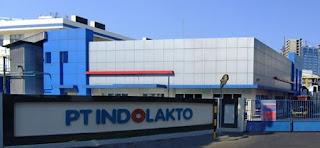 Info Lowongan Kerja Terbaru Jakarta Via Online PT. Indolakto-Indofood CBP (PT. INDOMILK)