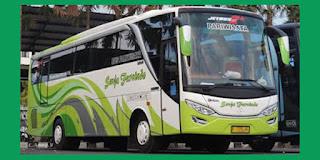 Bus Pariwisata Senja Furnindo