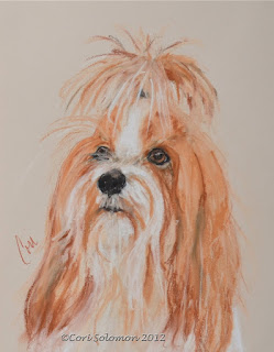 Tibetan Terrier By Cori Solomon