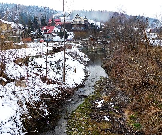 Potok Gorzki.