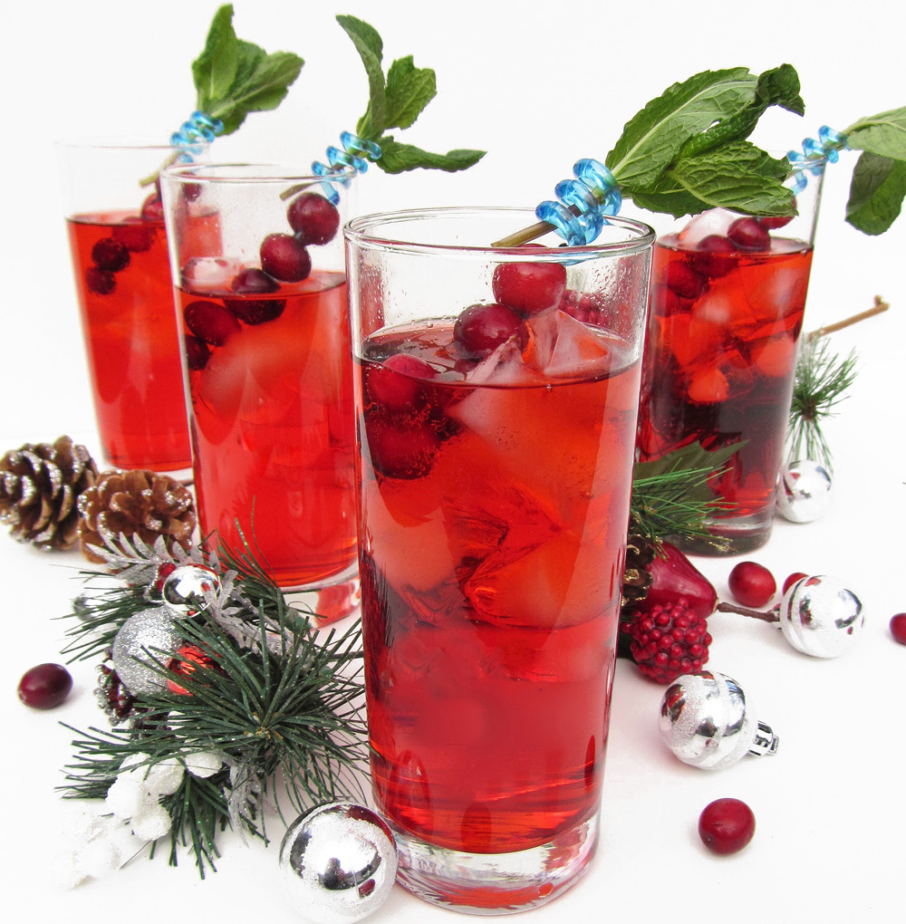 Cranberry Gin Fizz (and Merry Christmas!)