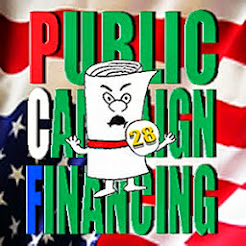 Real Voter Representation = Public Campaign Financing!