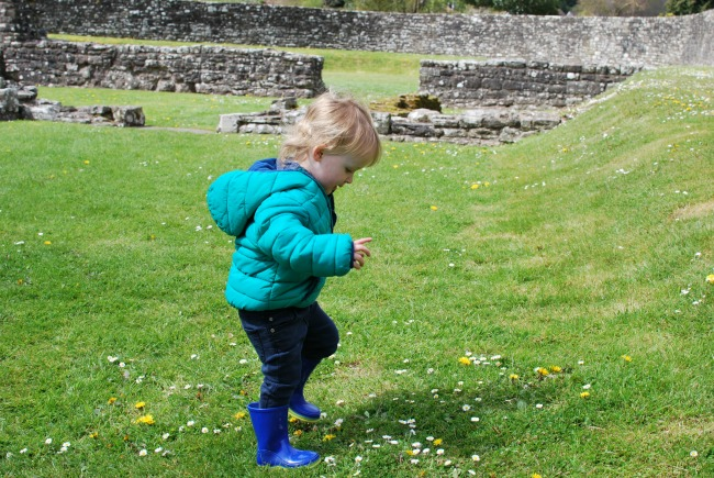 toddler jumping on grass