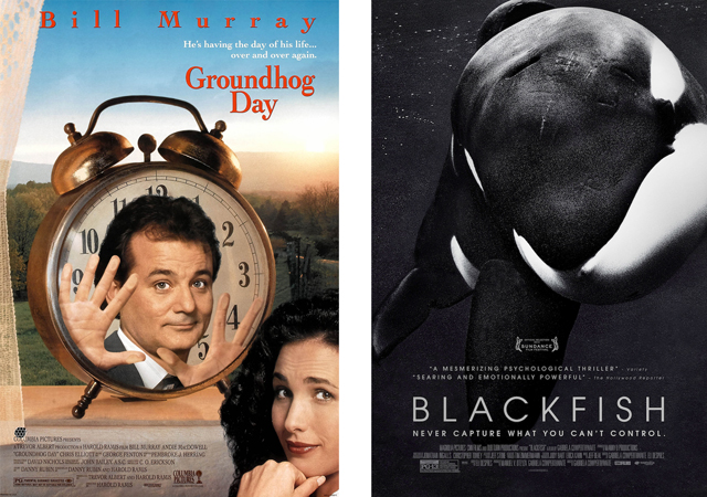 Groundhog Day Blackfish