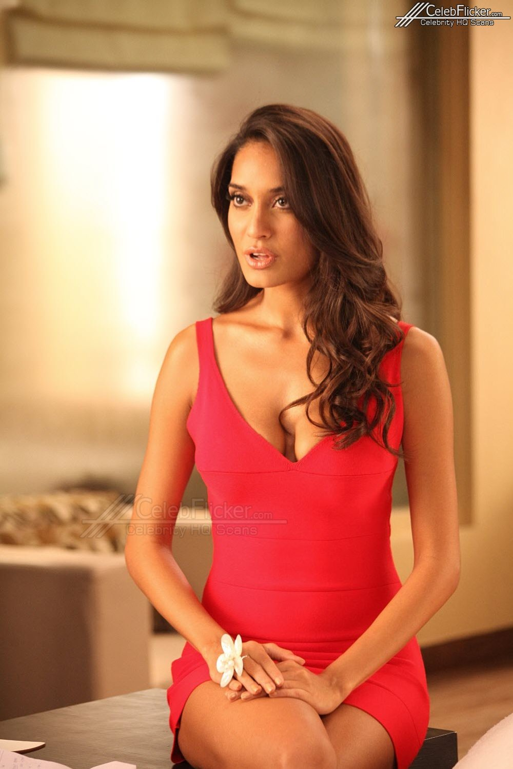 Hot actress pics: Lisa Haydon