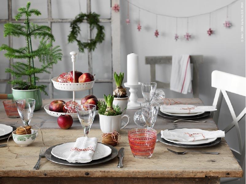 alberelli, bulbi di giacinti, qualche mela rossa ed è già Natale