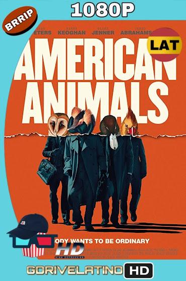 American Animals (2018) BRRip 1080p Latino-Ingles MKV