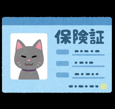 ペットの保険証のイラスト(猫)