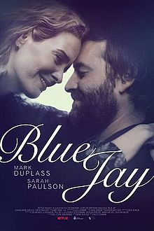 Blue Jay 2016 Movie Download HD Free Full 720p BluRay thumbnail