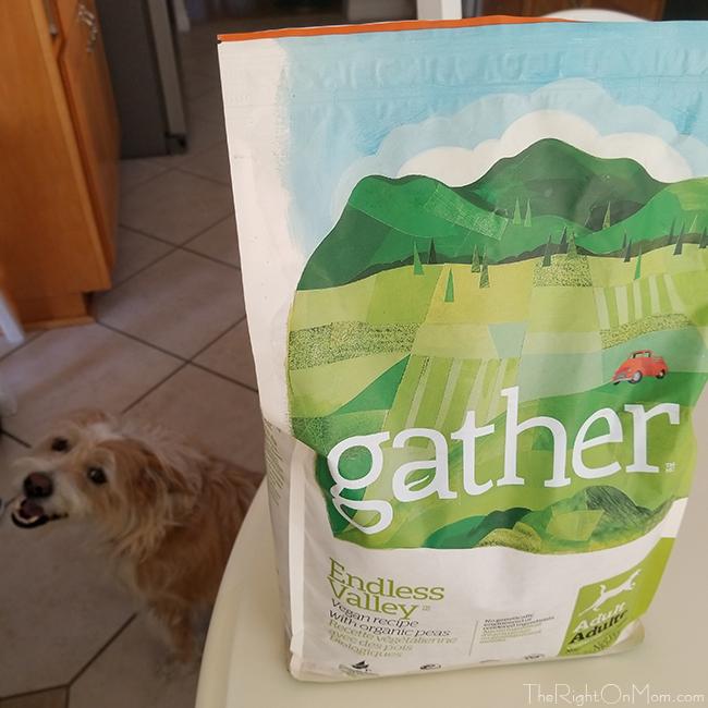Gather Vegan Dog Food