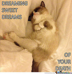 Cat death dream meaning - Boulle ico uk zambia