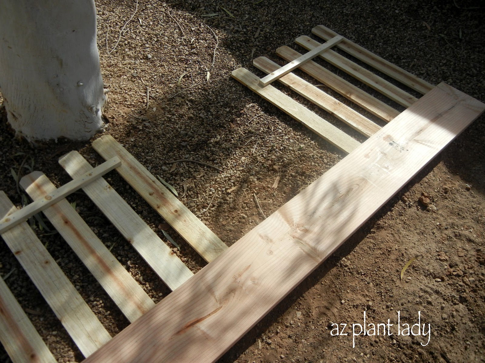 pressure treated wood Archives - Ramblings from a Desert Garden