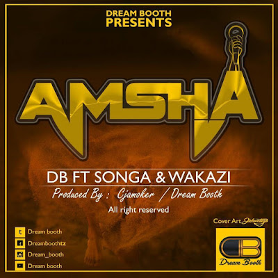 Amsha