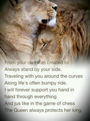 Lion Relationship Quotes