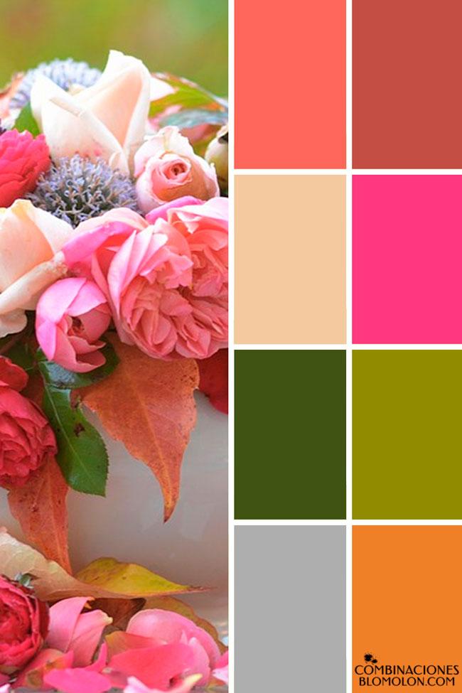 combinacion_de_colores_variedad_2