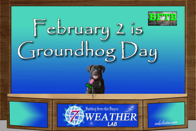 Paisley the Weather Lab has some advice for Groundhog's Day