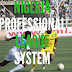 Nigeria Professional Football League System - Everything You Need to Know