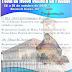Participe da Programação do 9º dia da Festa de Nossa Senhora da Piedade