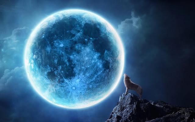 Foto van een huilende wolf bij volle maan