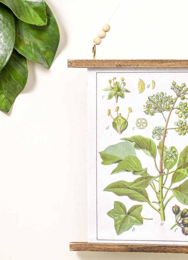 Easy DIY botanical wall hanging