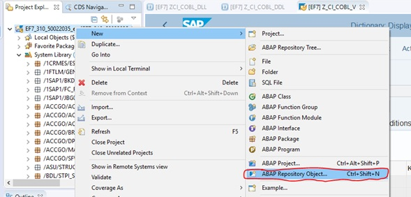 SAP ABAP Central: S/4HANA Conversion – Error in display