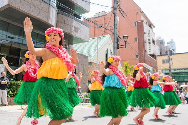 マロニエ祭り、カハレフラ&タヒチスタジオの写真 14