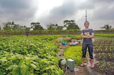 Top 4 Online Facilities for Nigerian Farmers