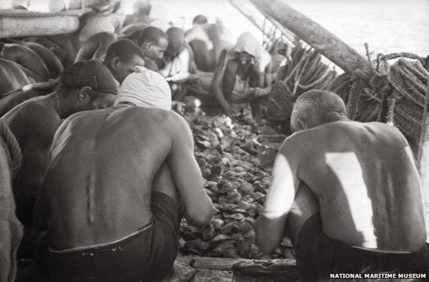 As ostras foram acumulando no deck sob o olhar atento do capitão