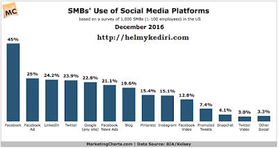 Statistik Pengguna Media Sosial