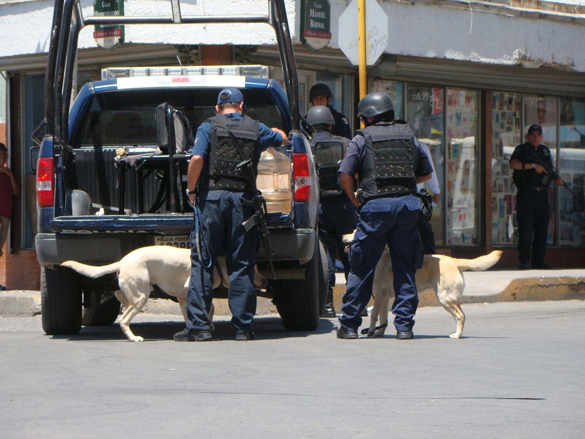 Sacan de sus oficinas al tesorero del ayuntamiento de Ignacio Zaragoza, Chihuahua y lo ejecutan