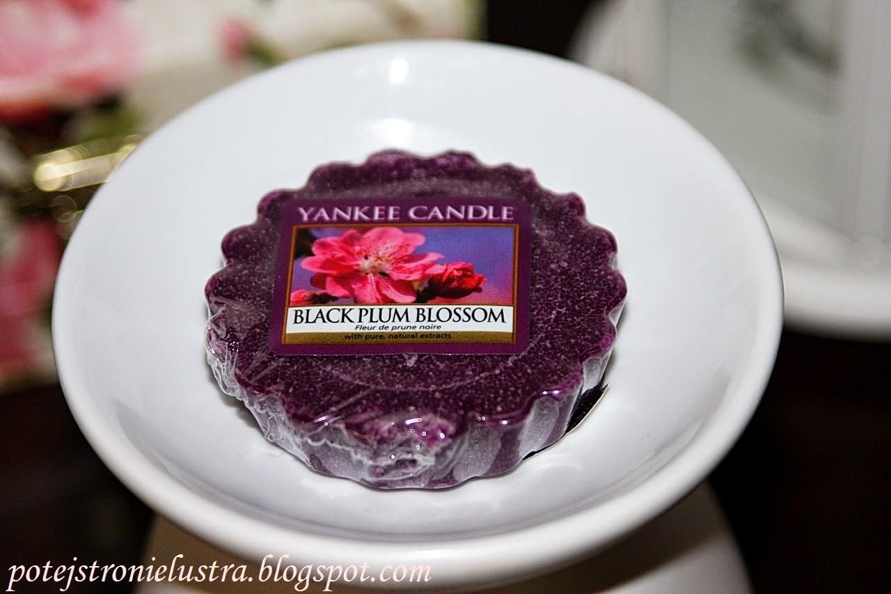 Między świeżością, a słodyczą - Yankee Candle Black Plum Blossom