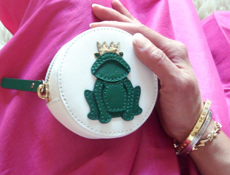 Coin purse with frog prince.