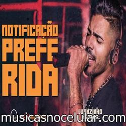 Baixar Música Notificação Preferida - Luanzinho Moraes Mp3
