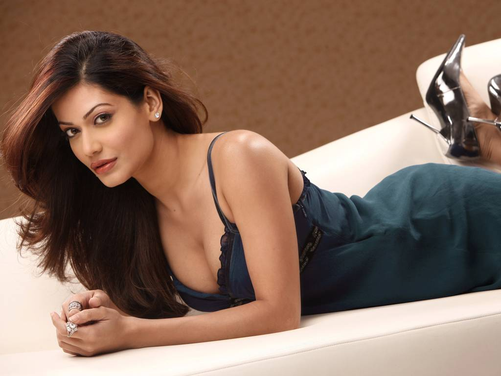 Case registered against TV actress Payal Rohatgi objectionable comments in video.
