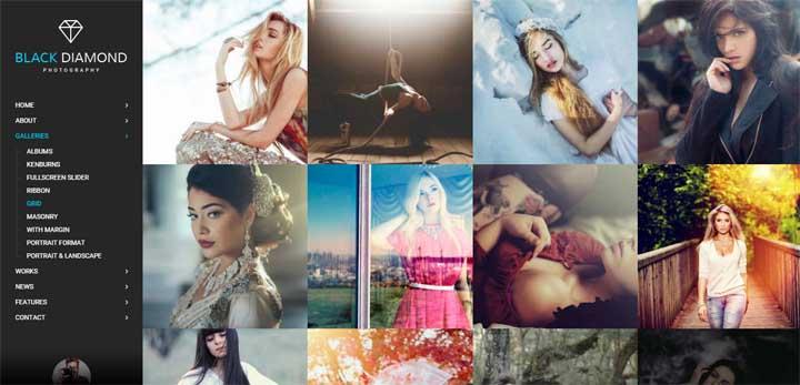 Diamond Photography Gallery Theme