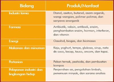Prinsip Dasar Bioteknologi, Jenis-jenis, dan Dampak Boteknologi Bagi Masyarakat serta Lingkungan